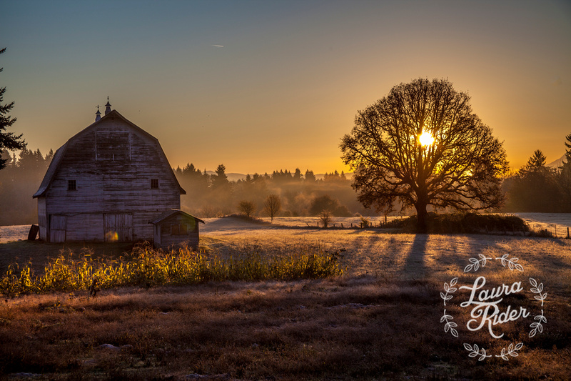 Sunrise barn, Southwest Washington